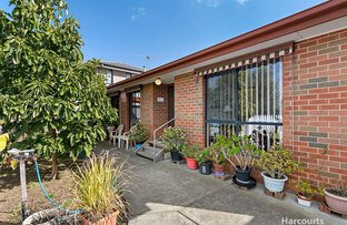 Picture of 5 Olinda Grove, Oakleigh South VIC 3167