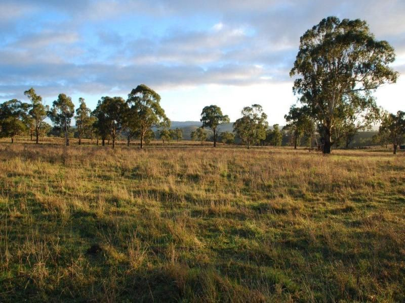 5 Oxley Drive, Walcha NSW 2354, Image 1