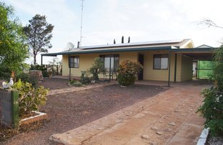 Picture of 38 Angas Street, Cowell SA 5602