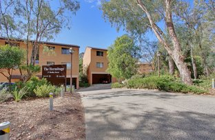 Picture of 45/17 Medley Street, Chifley ACT 2606