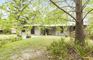 529 LEMON TREE PASSAGE ROAD, Salt Ash NSW 2318