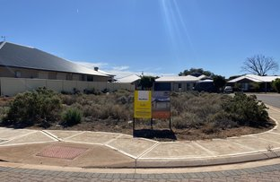 Picture of 8 Graham Cornes Court, Whyalla Norrie SA 5608