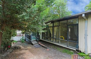 Picture of 19 Elsie Street, Boronia VIC 3155