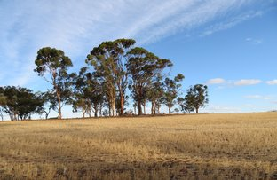 Picture of Lot 10352 Cunderdin-Quairading Road, Cunderdin WA 6407