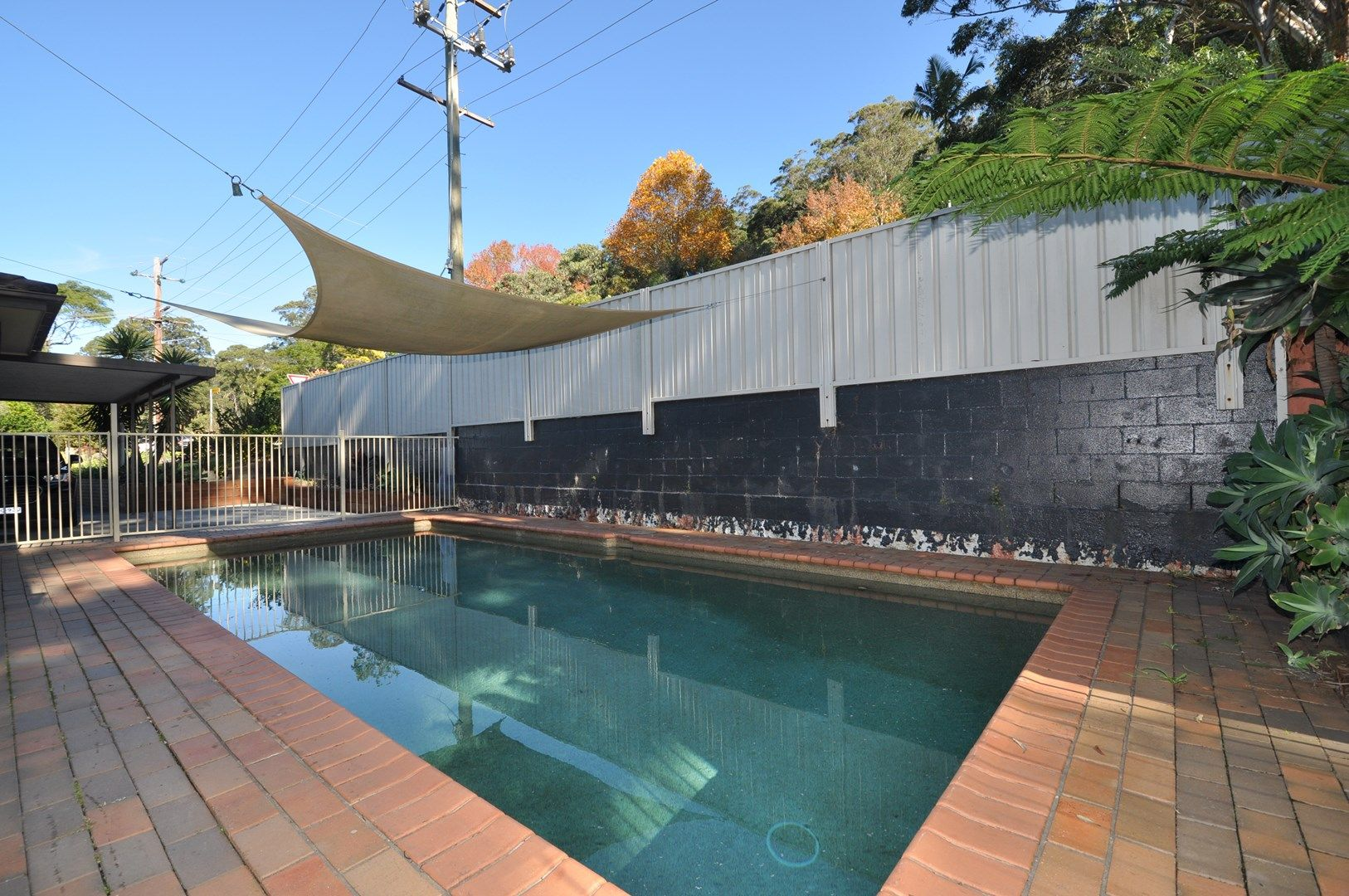 3 Alison Road, Springfield NSW 2250, Image 0