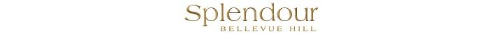 Branding for Splendour