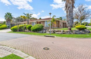 Picture of 3 Raven Court, Wynn Vale SA 5127