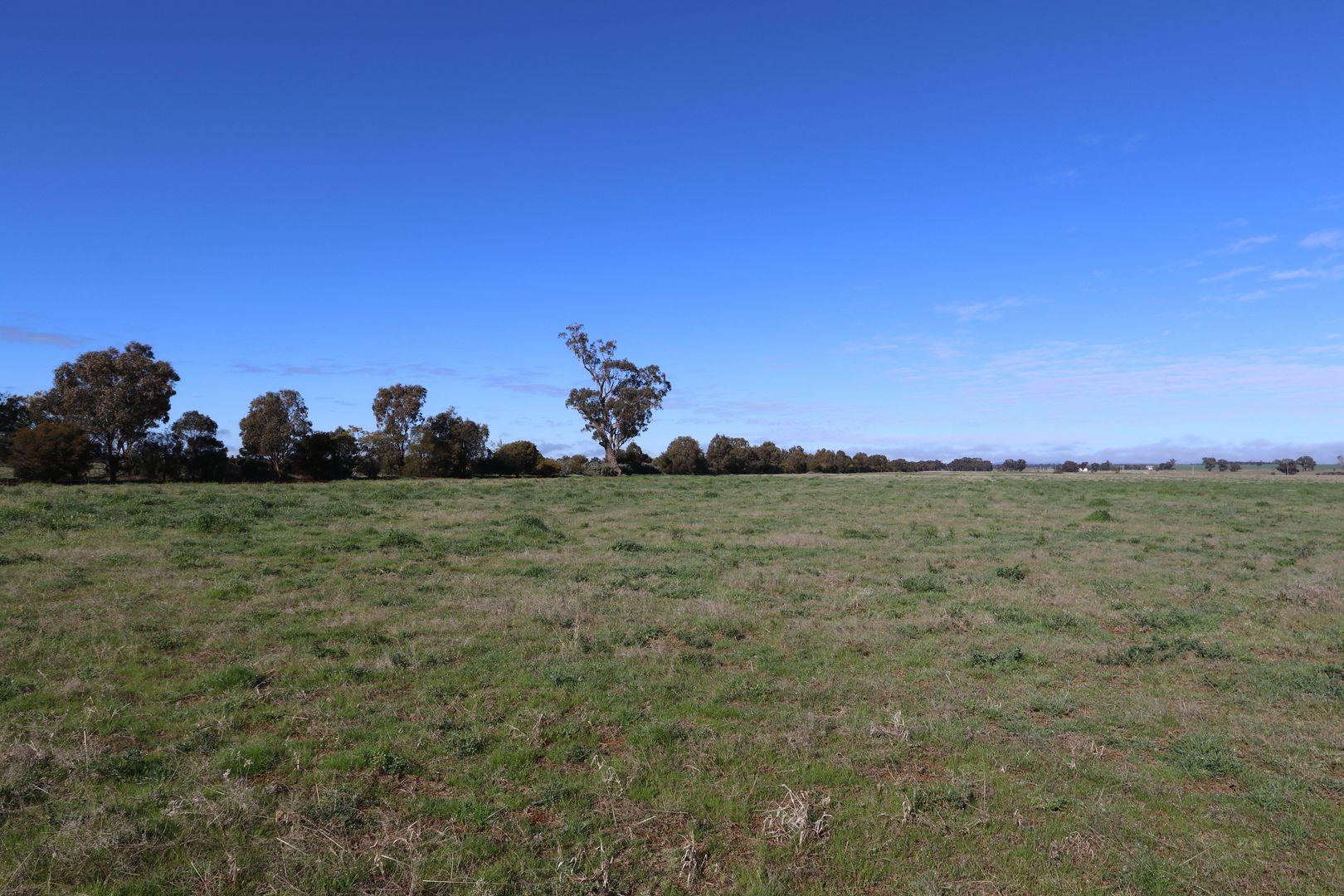 1466 Rannock Road, Berry Jerry NSW 2701, Image 1
