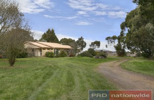 Picture of 89 Racecourse Road, Haddon VIC 3351