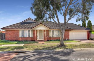 Picture of 1 Galette Place, South Morang VIC 3752