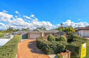 Picture of 21 Limosa Court, Mango Hill QLD 4509