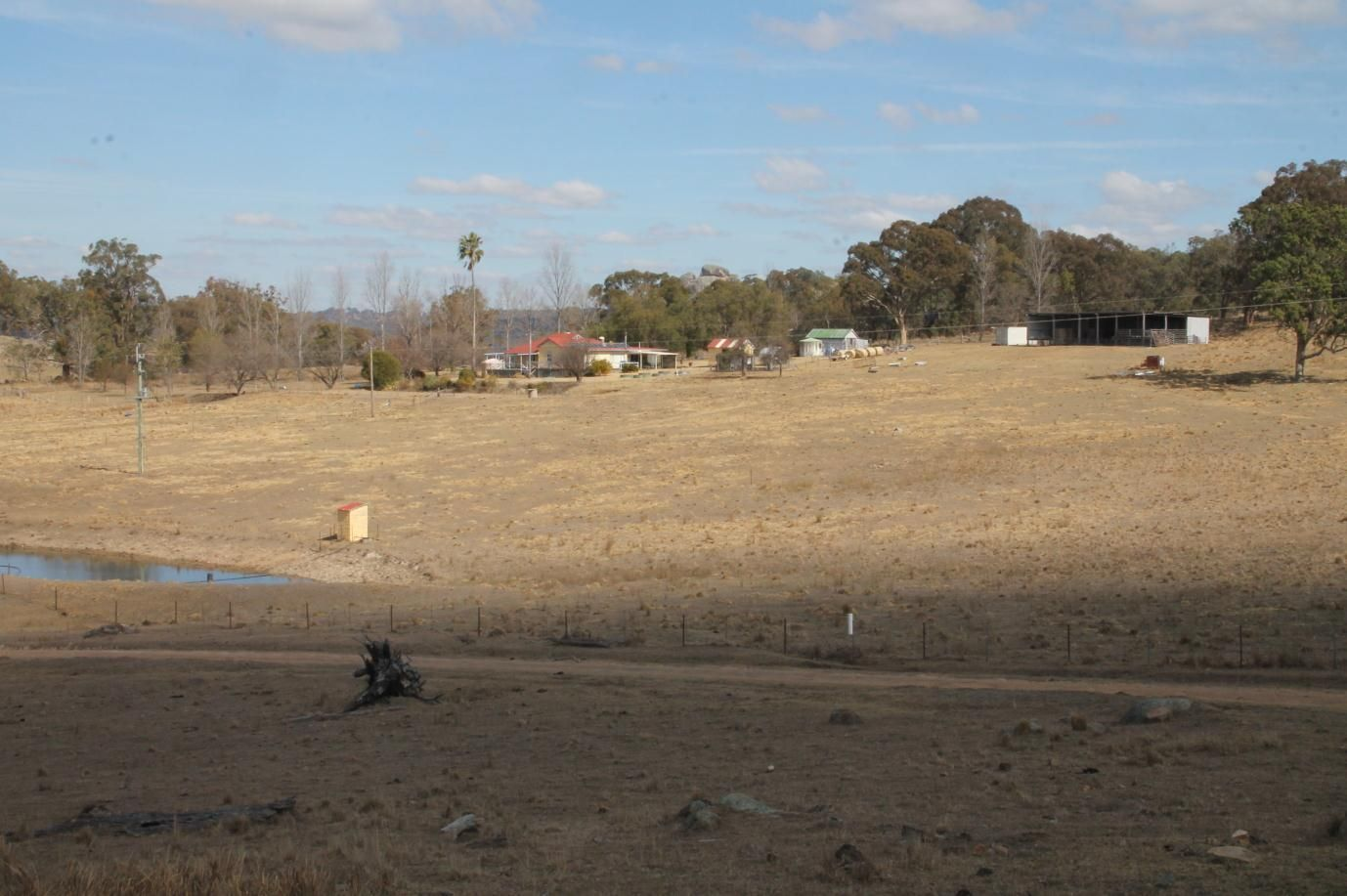 868 Pyes Creek Road, Tenterfield NSW 2372, Image 2