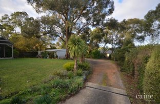 Picture of S2/421-423 Tinworth Avenue, Mount Clear VIC 3350