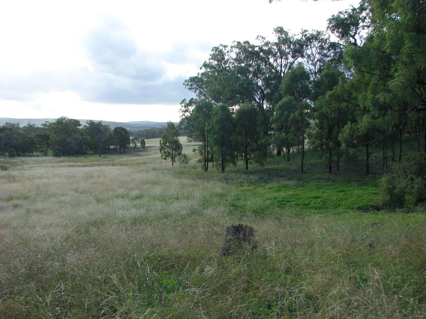 Lot 102 Skellatar Stock Route, Muswellbrook NSW 2333, Image 0