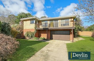 Picture of Lot 1/24 Hodge Street, Beechworth VIC 3747