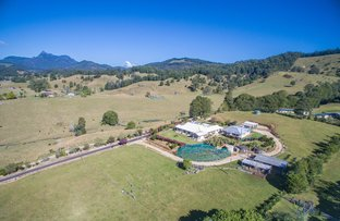 Picture of Crystal Creek NSW 2484