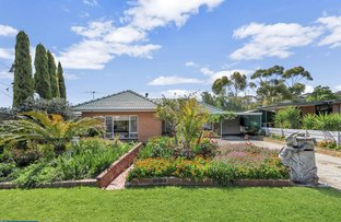 Picture of 38 Graham Street, Para Hills SA 5096