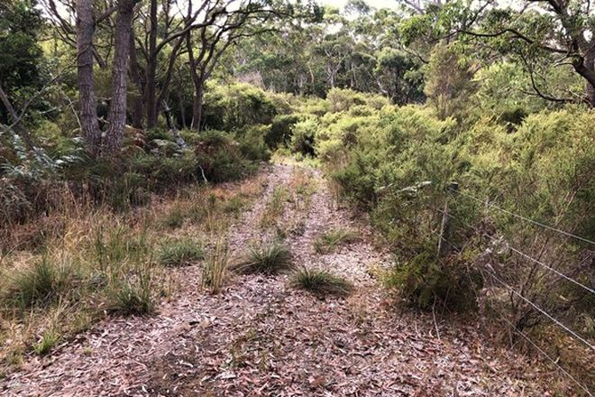 Picture of Lot 10281 Pemberton Northcliffe Road, NORTHCLIFFE WA 6262