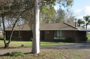 Picture of 673 Old Dookie Road, Shepparton East VIC 3631