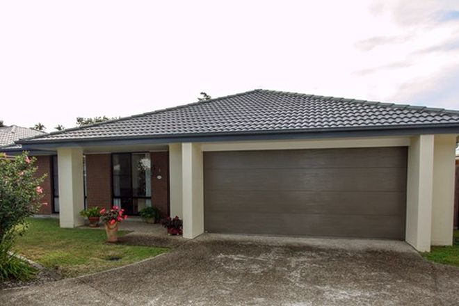 Picture of 5/28 Dorothy Street, MURWILLUMBAH NSW 2484