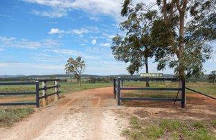 Picture of 1500 Westwood-Wowan Rd, Pheasant Creek QLD 4702