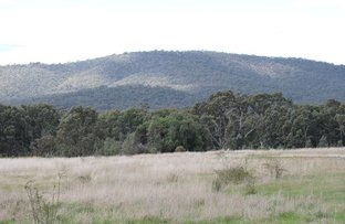 Picture of 0 Rifle Butts Road, Landsborough VIC 3384