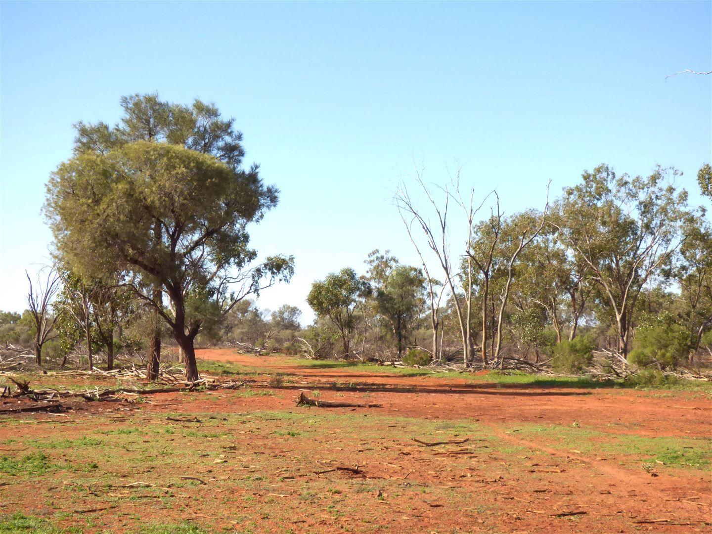". ""Wyuna"" & ""Neverfail"", Eulo QLD 4491, Image 1"