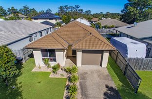 3 Gum Blossom Court, Sippy Downs QLD 4556