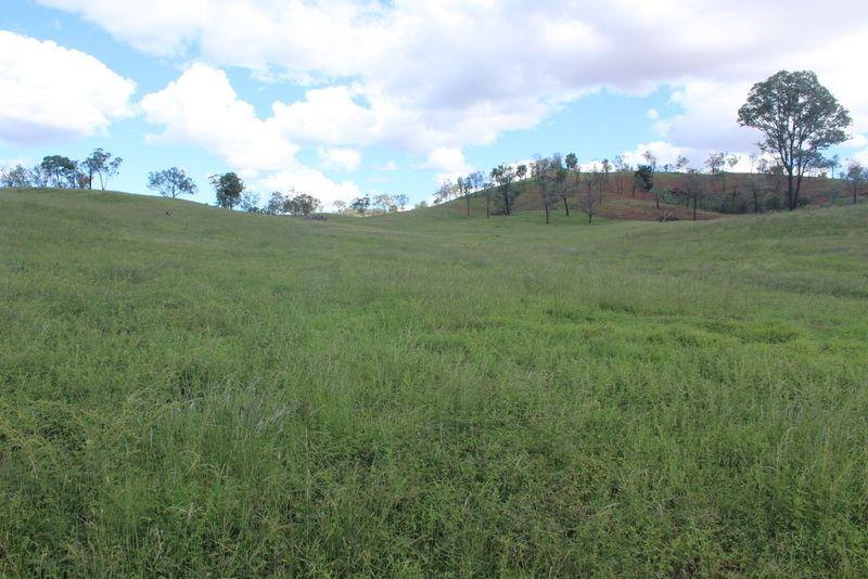 """ Olive Vale"", Bingara NSW 2404, Image 2"