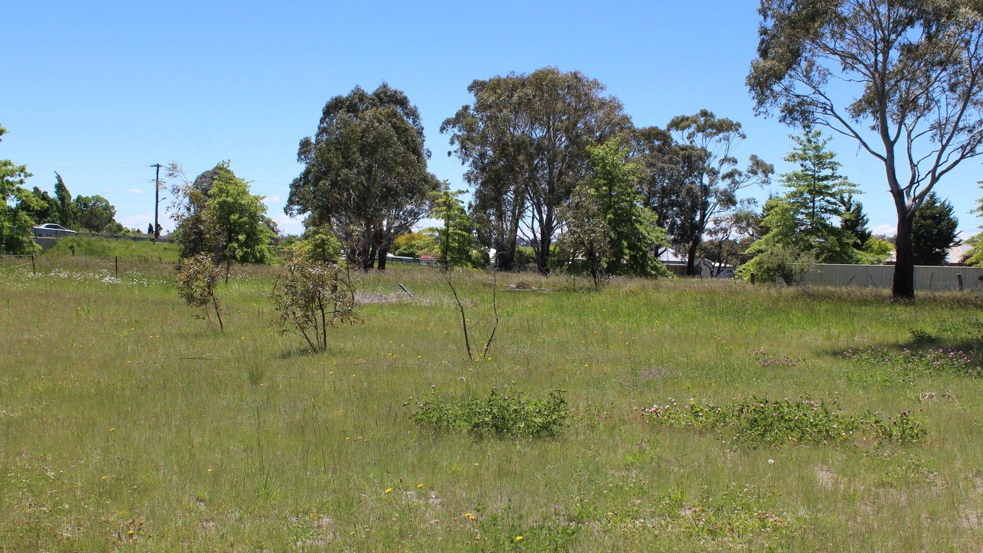 67 Abbott Street, Glen Innes NSW 2370, Image 1