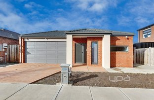 Picture of 19 Gossamer Way, Mickleham VIC 3064