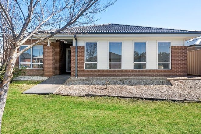 Picture of 31 Peeler Street, WODONGA VIC 3690