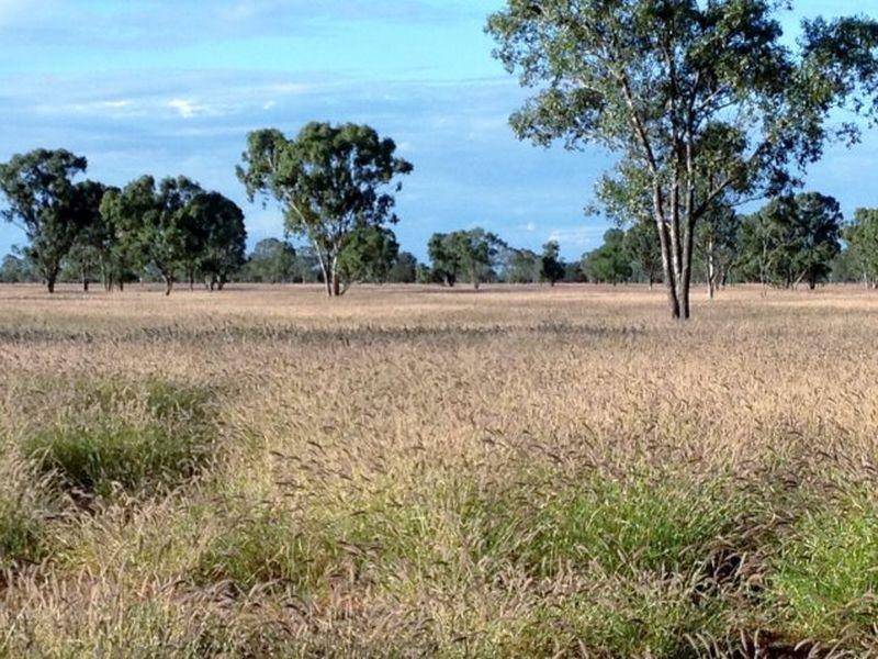 0 Part 'Bethelen', Thallon QLD 4497, Image 0
