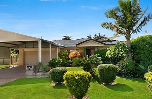 Picture of 3 Amy Place, Ballina NSW 2478
