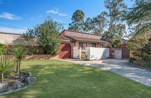 Picture of 10 Cotula Place, Macquarie Fields NSW 2564