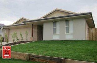 Picture of 25 Custodian Crescent, Ormeau QLD 4208