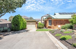 Picture of 10 Essling Place, Greenwith SA 5125
