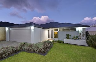 Picture of 11 Basedow Chase, Banksia Grove WA 6031
