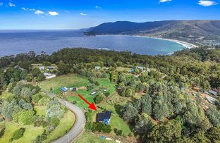 Picture of 165 Pirates Bay Drive, Eaglehawk Neck TAS 7179
