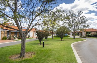 Picture of 265/45 Berkshire Rd, Forrestfield WA 6058