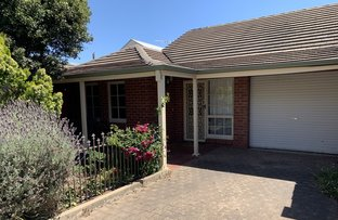 Picture of 3/7 Alfred Street, Norwood SA 5067