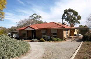 Picture of 434 Bective Lane, Tamworth NSW 2340