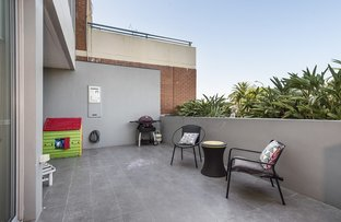 Picture of 1/301-303 Condamine Street, Manly Vale NSW 2093