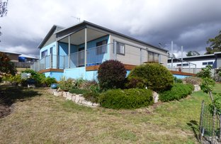 Picture of 49 Falmouth Street, St Helens TAS 7216