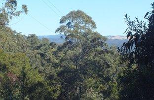 Picture of Dorrigo NSW 2453