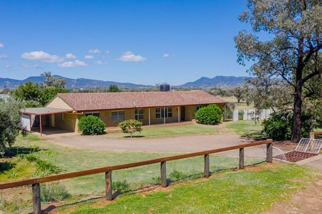 Picture of DURI NSW 2344