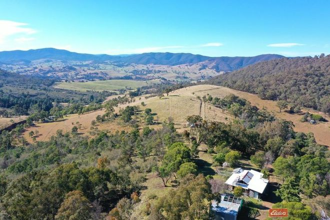 Picture of DARGO VIC 3862