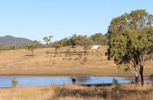 Picture of 589 The Narrows Road, Mount Larcom QLD 4695
