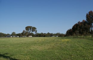 Picture of 20 Catholic Church Road, Mintaro SA 5415