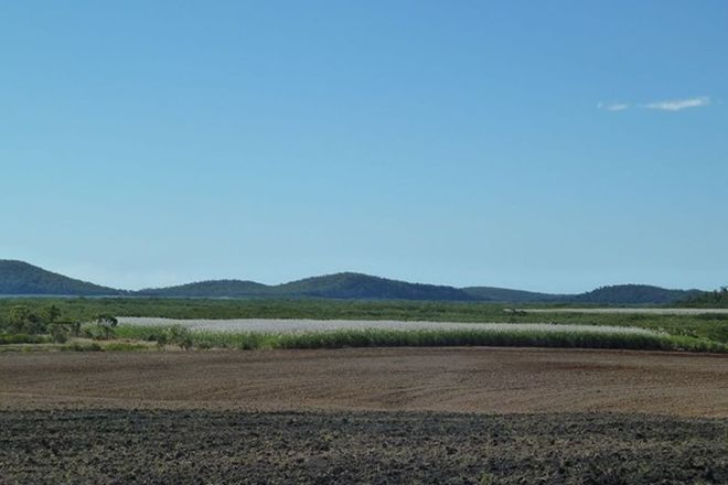 Picture of L494 Jansens Road, MOUNT OSSA QLD 4741